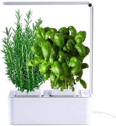 Huerto de interior Smart Garden AmzWOW