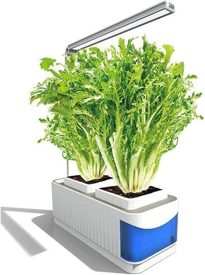 Kit de cultivo Interior Vogvigo