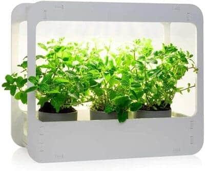 Mini Jardin New Safe
